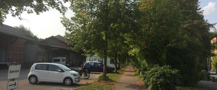 Rettet die Bäume am Haller Bahnhof
