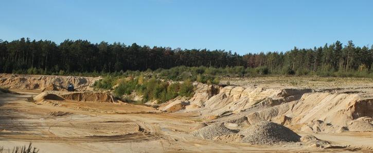 Raubbau im Wald verhindern: Waldverbundsystem schützen
