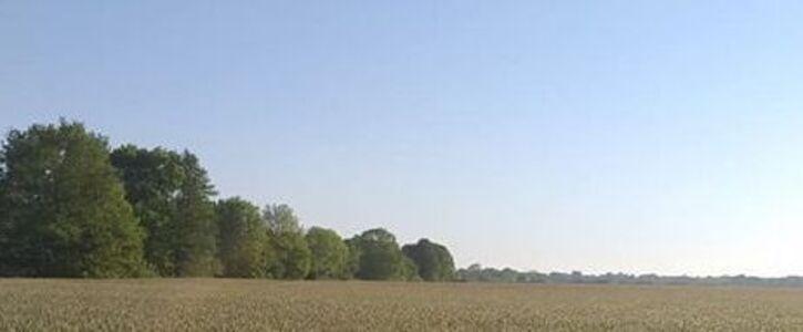 Der Wahlkreis Steinburg - Dithmarschen Süd will mehr Klimaschutz!