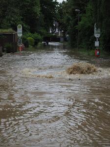 Hochwasser Am Ruhrort - für den Erhalt und die Neuordnung des Dr.-C.-Otto-Grabelandes