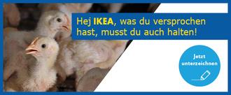 IKEA, halte dein Versprechen! Lass deine Hühner besser leben.