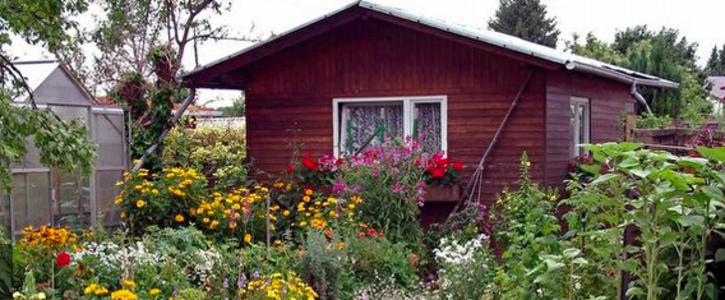 Bau-Projekt stoppen, Kleingärten retten!